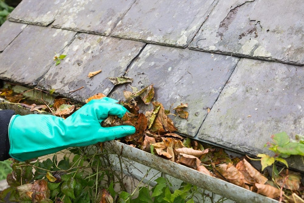 Claw Roofing Calgary | Cleaning gutters as part of roof maintenance